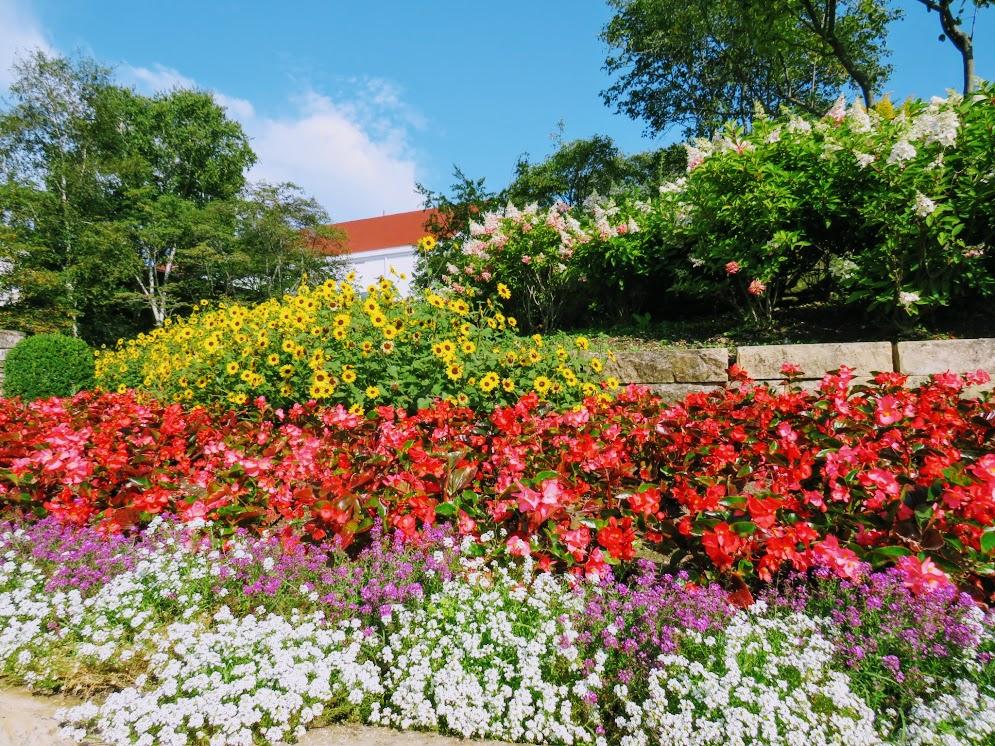 Mackinac Island Flowers by FlowerChick.com