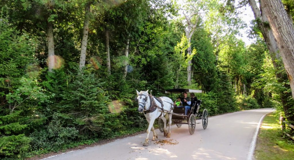 Horse and Carriage on Mackinac Island by FlowerChick.com