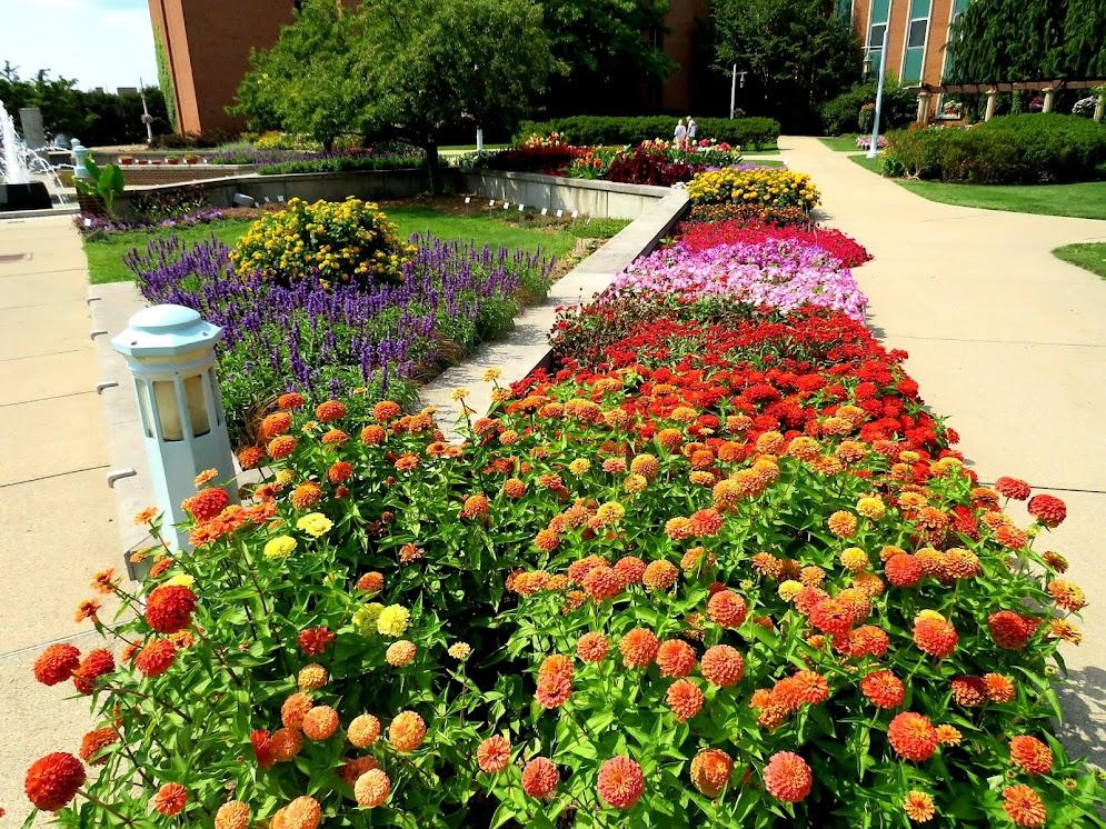 Lansing MI Gardens by FlowerChick.com