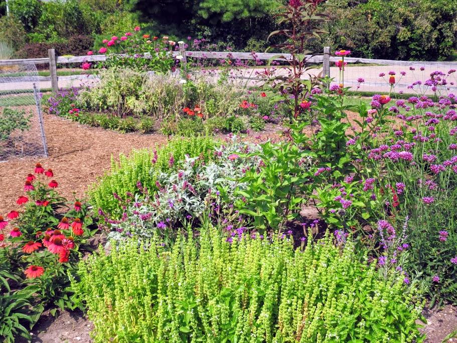 Horticulture Gardens at MSU