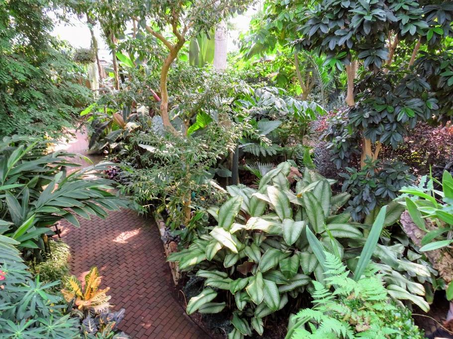 Olbrich Bolz Conservatory