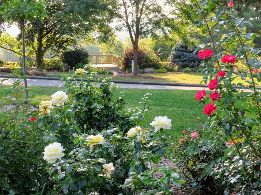 Muscatine Iowa Gardens