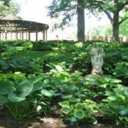 Iowa Gardens